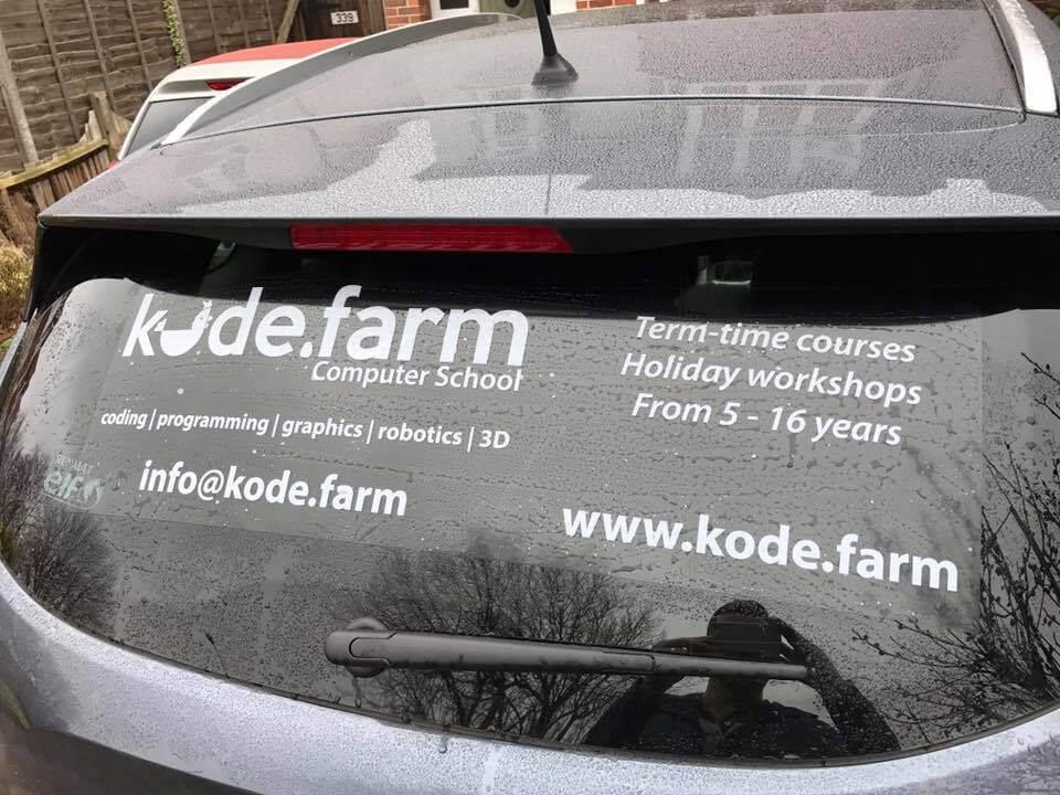 Car back window sticker